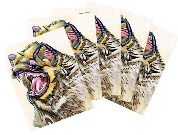 Hoary bat postcards
