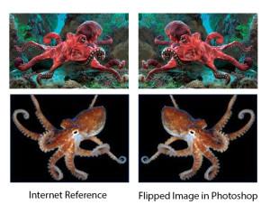 Octopus Blog