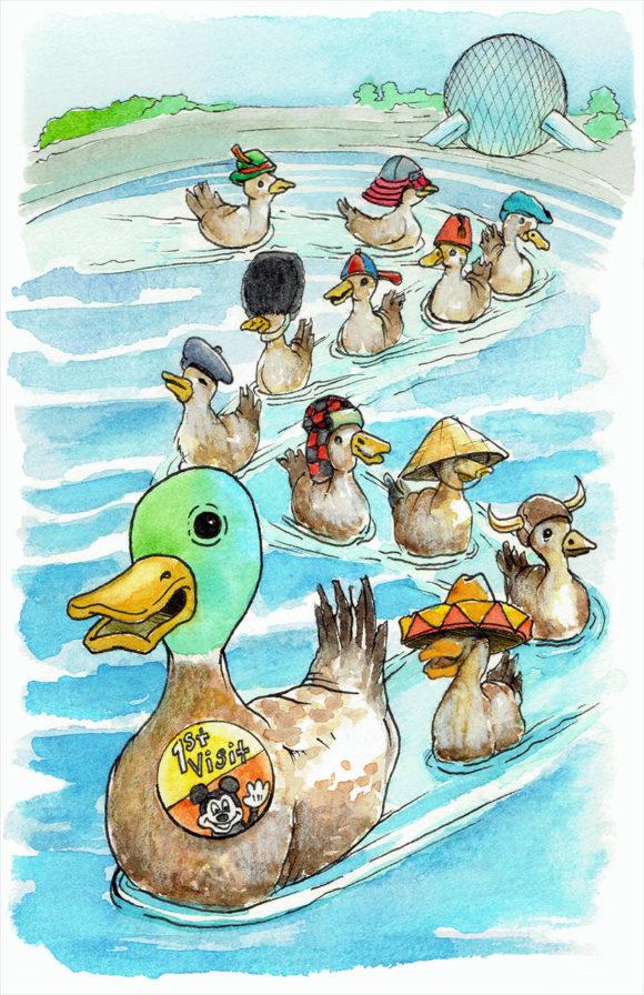 duck showcase