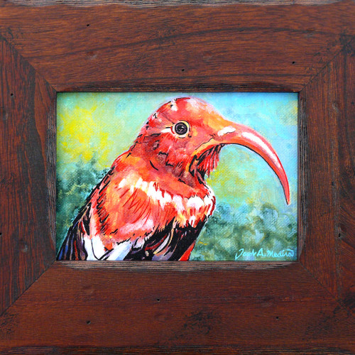 Hawaiian Bird in rustic wood frame