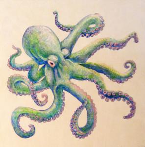 octopus7